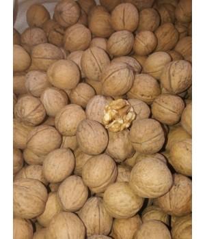 Грецький орех кругляк